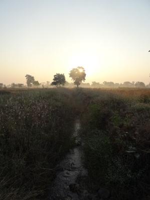 Sunrise at Somnath